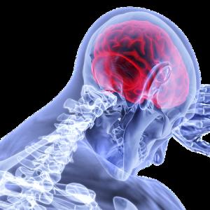 Pain red brain